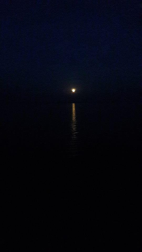 ירח בסיני